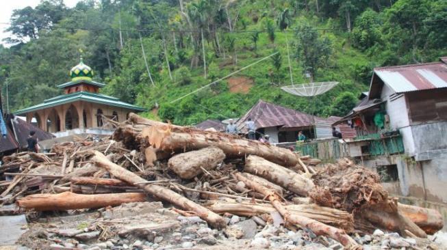 Beberapa warga berada di antara kayu yang terbawa arus sungai pascabanjir bandang yang terjadi, di Desa Muara Saladi, Kecamatan Ulu Pungkut, Mandailing Natal, Sumatra Utara, Sabtu (13/10).