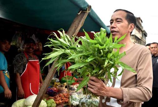 Jokowi saat beli sayuran di Pasar Gintung Tanjung Karang, Bandar Lampung.
