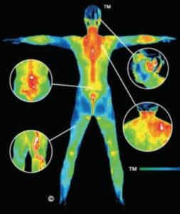 whole-body-image